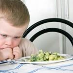 Что делать если ребенок отказывается от еды