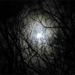 Как побороть страх темноты